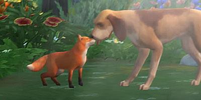 Pets zorros mascotas Sims 4