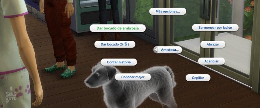 Utiliza la interacción Dar bocado de Ambrosía con tu mascota fantasma